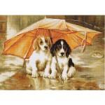 G550 Двама под чадъра