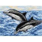 AB012 Делфини - ЩАМПА