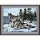 567 Вълци
